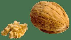 Decapsoft decapage basse pression coque de noix